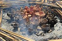 土器焼き体験![4・6月のイベント]